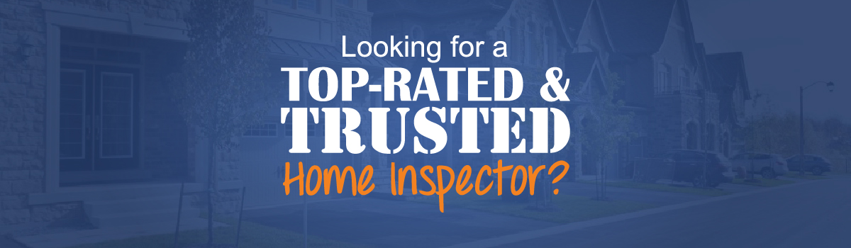 Top-Rated and Trusted Home Inspection Services Slide