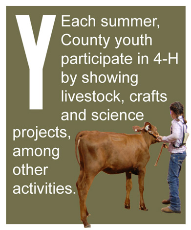 Y - Each summer, County youth participate in 4-H by showing livestock, crafts and science projects, among other activities.