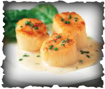 A trio of scallops perfectly cooked with seasonings on dinner plate.