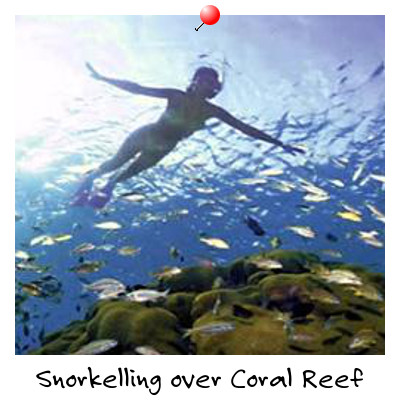 View of a Girl Snorkelling over a Coral Reef Sihanoukville Cambodia