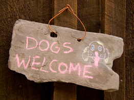 dog friendly pub near Southam, Warwickshire