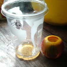 Don't let these annoying pests get the best of you — get rid of them with their fast-acting fruit flies apple trap.