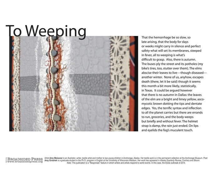 Amy Meissner, textile artist | From the post Broadsided. | www.amymeissner.com/blog/broadsided