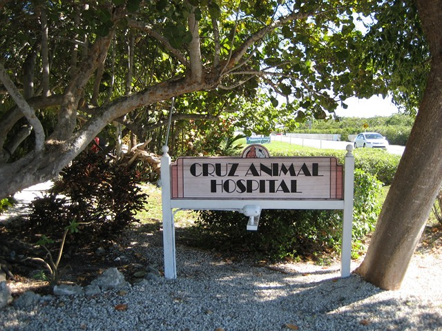 Cruz Animal Hospital sign