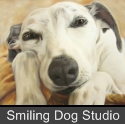 SmilingDogPortraitdog