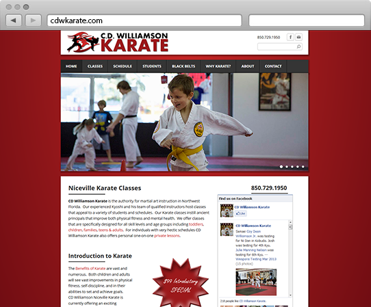 CD Williamson Karate