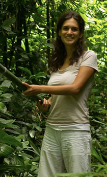 Julia Teles harvests bamboo