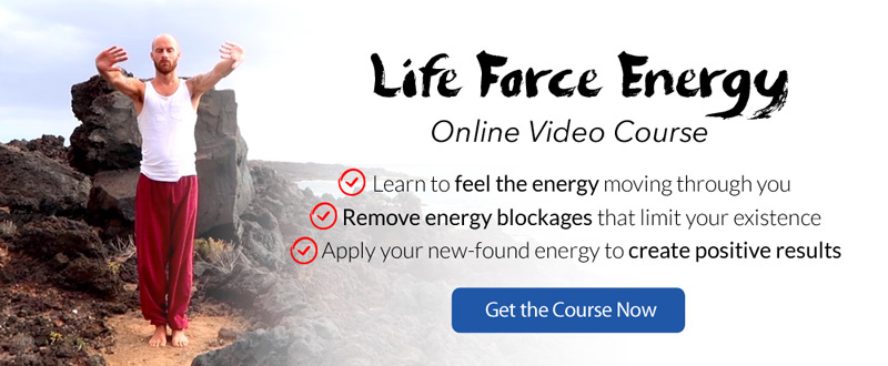 Get my LifeForce Energy online video course
