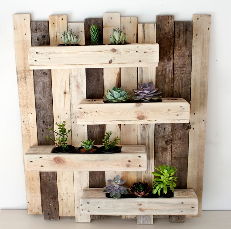 Reclaim Design's wall mounted vertical garden made from reclaimed wood containing succulents.