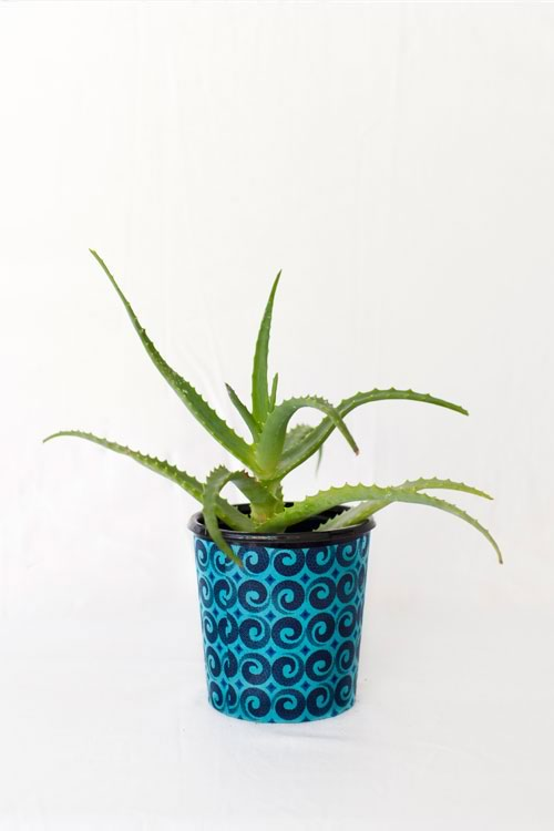 Reclaim Design's fabric decoupage recycled plastic pot with succulent