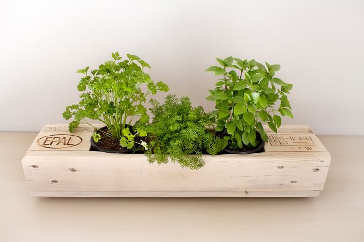 Reclaim Design's EPAL branded planter made from reclaimed wood containing herbs.