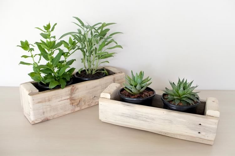 Reclaim Design's 2 pot planters made from reclaimed wood containing herbs and succulents.