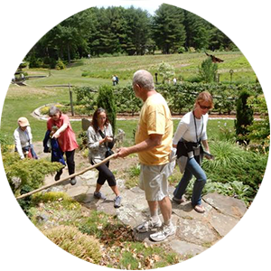Explore Bedrock Gardens in NH