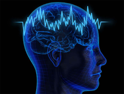 Hyper-Frequency-Viscoelastic-Spectroscopy-of-Brain