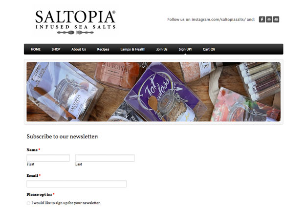Saltopia Email Marketing Campaign