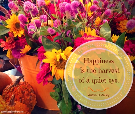 Picture: Hapiness is the harvest of a quiet eye.
