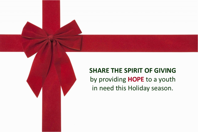 Share the Spirit of Giving by providing HOPE to a youth image